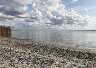Strand Saaler Bodden