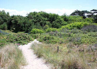 Natur pur und absolute Ruhe und Privatsphäre - durch den privaten Strandaufgang direkt am Grundstück