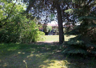 Wir sind Natur pur - von einem kleinen Waldstück gelangt man direkt auf das Grundstück der Anlage